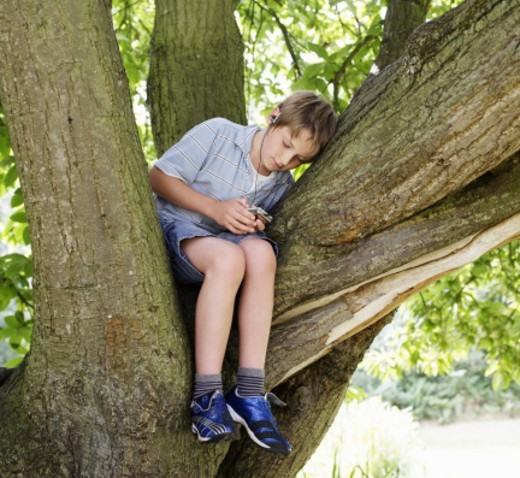 a young boy (12 years old) sitting up in a tree, relaxing and listening to music on his mp3. its mid summer, with the tree in full leaf and the sun shining through : Stock Photo