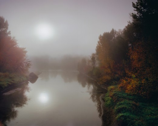 Fall foliage lines a the Wenatchee River.  Morning fog is clearing and the sun appearing. : Stock Photo