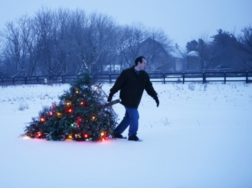 Man pulling illuminated Christmas tree in snow : Stock Photo