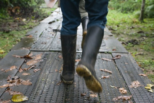 Hiker on path in Amazon Rain Forest : Stock Photo