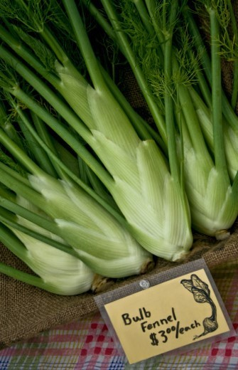 Bulb Fennel for sale at Farmers Market : Stock Photo