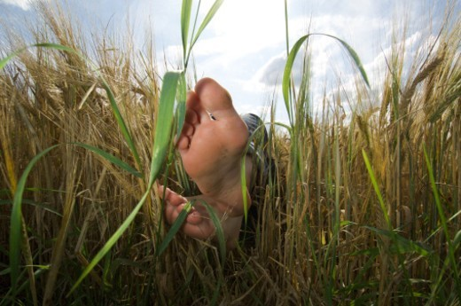 Two feet of a relaxing woman in a corn field : Stock Photo