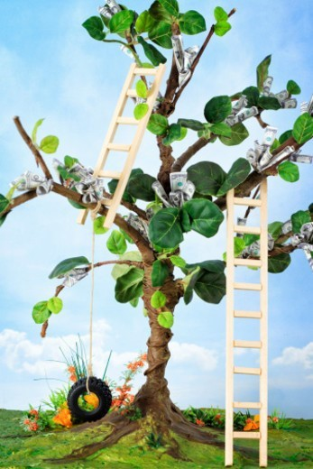Stock Photo: 1672R-65363 Financial concept. Money growing on a tree with ladders for easier access.