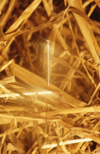 Needle in haystack : Stock Photo