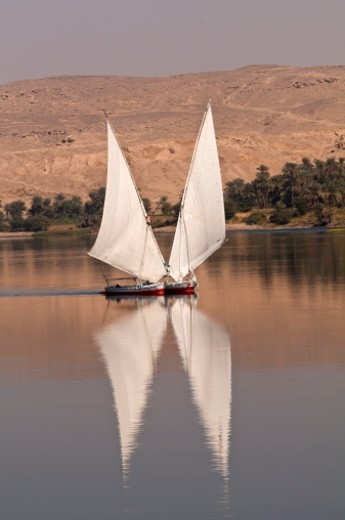 Two felucca boats with joined sails, Nile River : Stock Photo