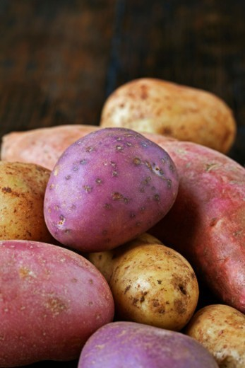 Stock Photo: 1672R-71555 Various types of potato