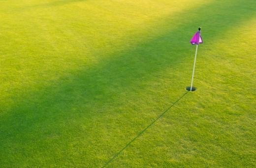 Stock Photo: 1672R-71582 A golf course putting green