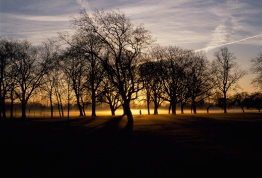 Stock Photo: 1672R-71900 A lone woman walks amongst the trees in Regent's Park, silhouetted against the sunset. A jet trail crosses the London sky.