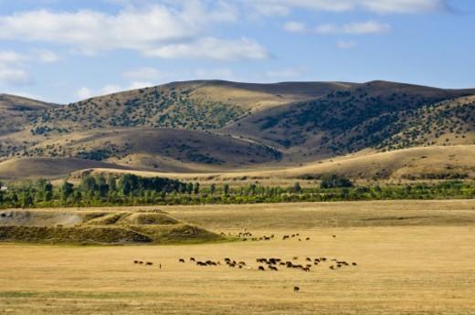 Landscape near Tsapatagh, Sevan, Armenia : Stock Photo