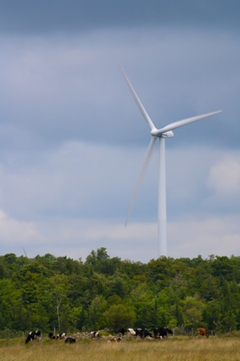 Stock Photo: 1672R-75905 Maple Ridge Wind Farm is the largest wind farm in the state of New York