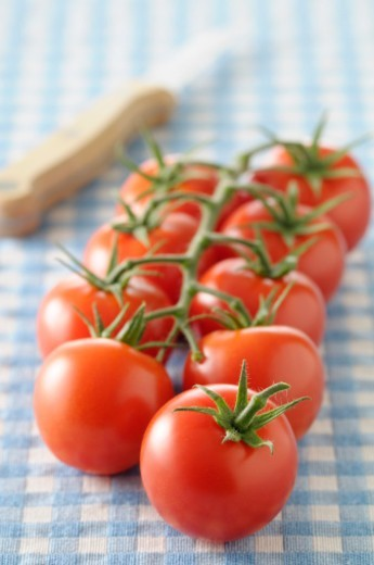 Stock Photo: 1672R-78740 Tomatoes on the vine