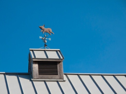 Pig weathervane on a tin roof : Stock Photo