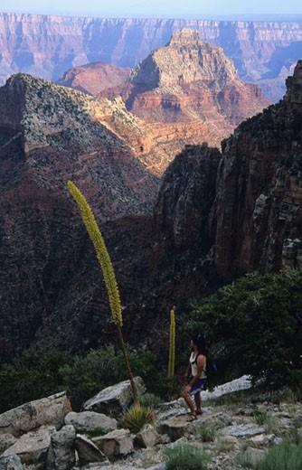 Stock Photo: 1701R-10566 Grand Canyon National Park, Arizona, United States of America.