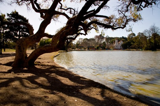 Stock Photo: 1701R-12150 Palermo Park, Buenos Aires, Argentina.