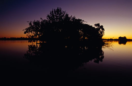 Murray Lagoon, Fitzroy River, Rockhampton, Queensland, Australia. : Stock Photo