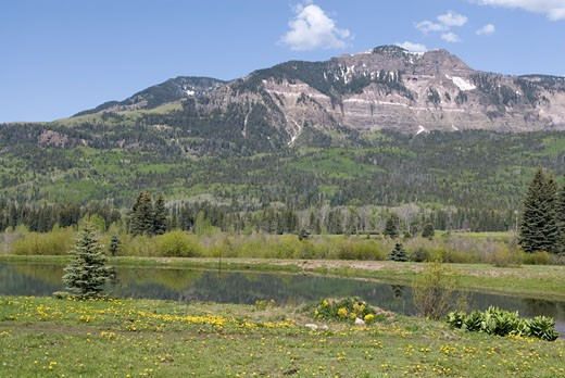 Near Pagosa Springs, Colorado. : Stock Photo