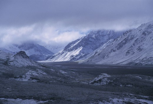 Stock Photo: 1701R-16187 Denali National Park, Alaska.