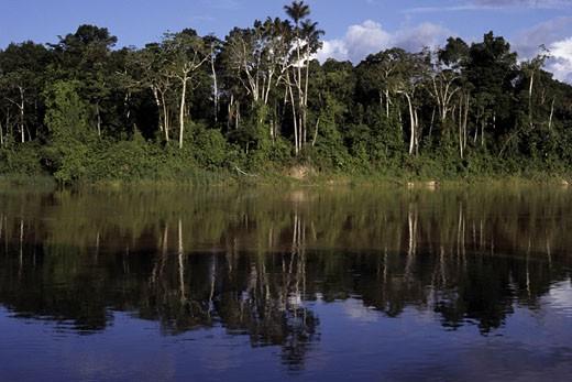 Itui River, Brazil. : Stock Photo