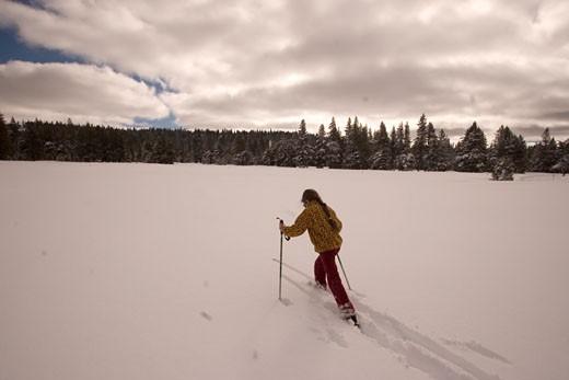 Dodge Ridge Ski Area, Stanislaus National Forest, California : Stock Photo