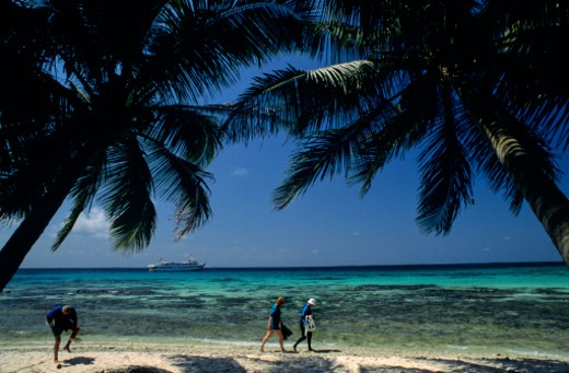 Stock Photo: 1701R-21298 Glover's Reef, Belize.