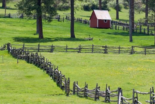 Near Pagosa Springs, Colorado. : Stock Photo