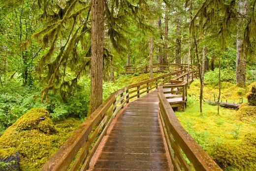 Glacier Bay National Park, Alaska. : Stock Photo