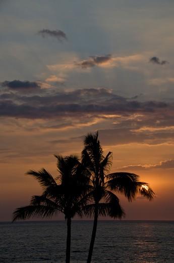 Kona, Big Island, Hawaii, United States of America : Stock Photo