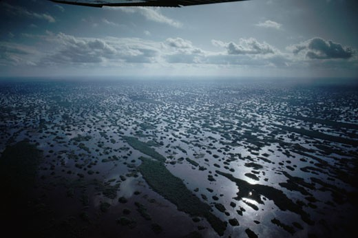 Stock Photo: 1701R-3643 Loxahatchee National Wildlife Refuge, Florida.