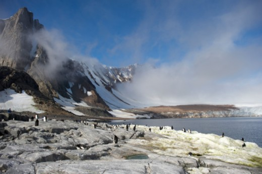 Antarctic Peninsula, Antarctica : Stock Photo