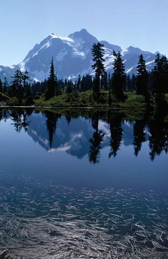 North Cascades National Park, Washington. : Stock Photo