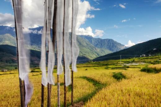 Stock Photo: 1701R-37481 Punakha Valley, Bhutan, Asia.