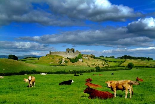 Stock Photo: 1701R-38233 Castleroche, County Louth, Ireland