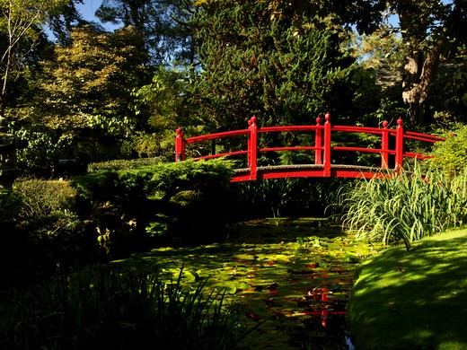Japanese Gardens, County Kildare, Ireland : Stock Photo