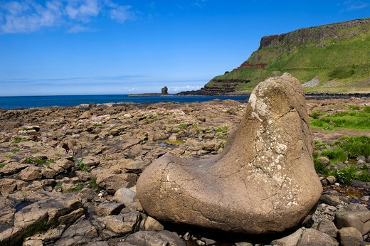 Giant's Causeway, Coubty Antrim, Northern Ireland : Stock Photo