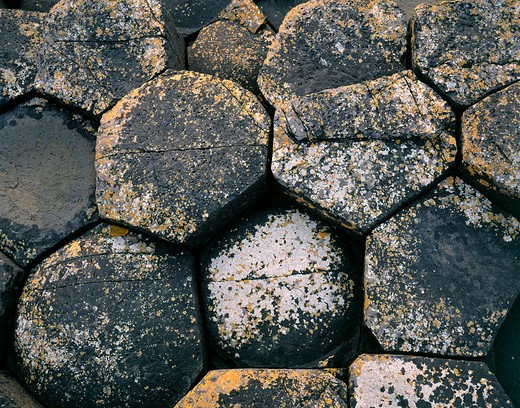 Stock Photo: 1701R-39675 Giant's Causeway, County Antrim, Northern Ireland