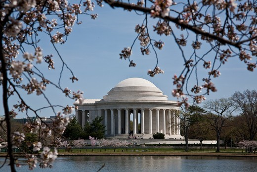 Stock Photo: 1701R-41177 Washington, District of Columbia, USA