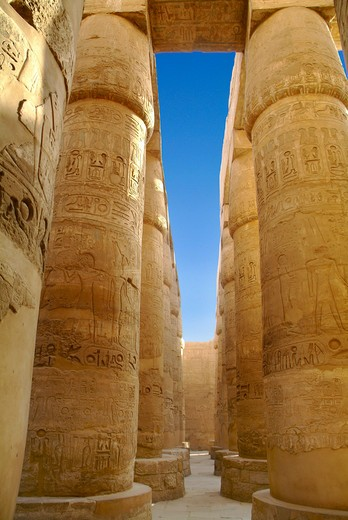 Stock Photo: 1701R-41648 Temple of Karnak, Luxor, Egypt.