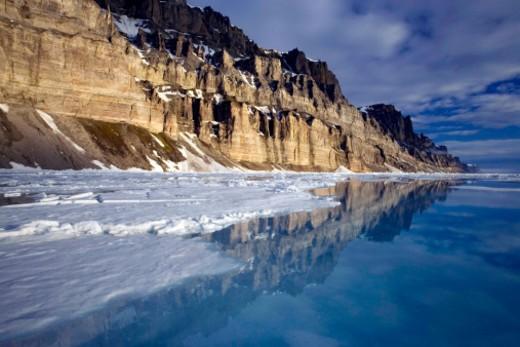 South Georgia, Antarctica. : Stock Photo