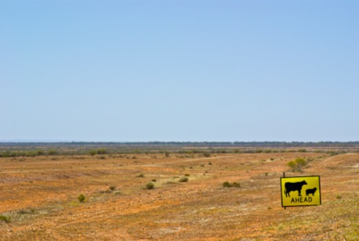Outback western New South Wales, Australia. : Stock Photo