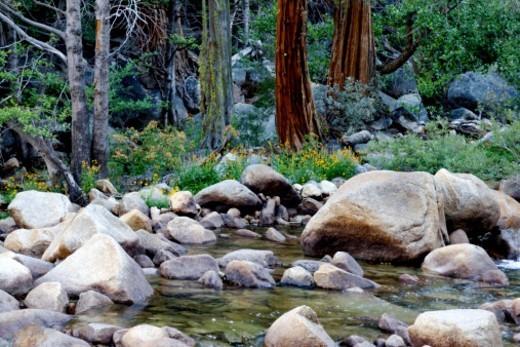Stock Photo: 1701R-47465 Yosemite National Park, California, USA.