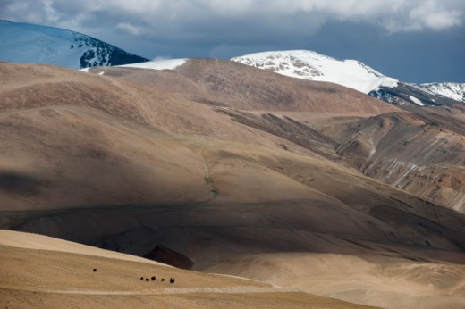 Tso Moriri, Ladakh, Jammi and Kashmir, India : Stock Photo