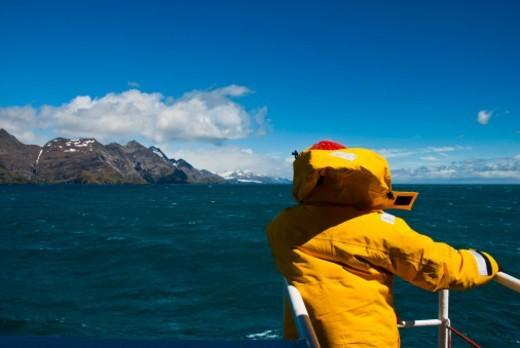 South Georgia Island, Sub Antarctic Islands, South Atlantic Ocean : Stock Photo