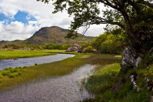 Stock Photo: 1701R-52575 Lakes of Killarney, County Kerry, Republic of Ireland