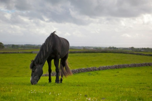 Athlone, County Westmeath, Republic of Ireland : Stock Photo