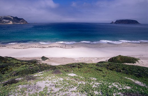 Stock Photo: 1701R-9715 Channel Islands National Park, San Miguel Island, California.