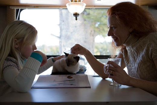 Stock Photo: 1712-142B Mature woman and her daughter petting a cat