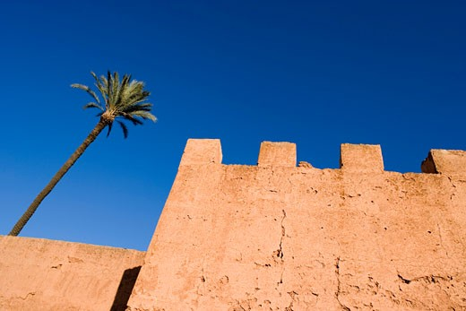 Stock Photo: 1726-133A Low angle view of a fortified wall, Marrakesh, Morocco