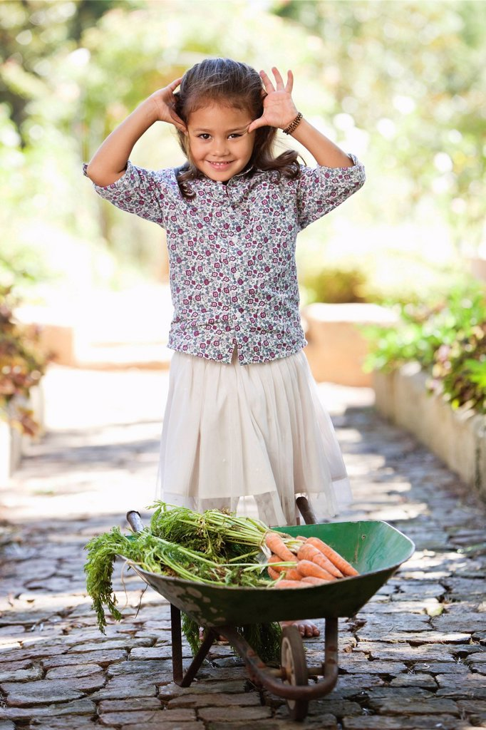 Cute girl standing near a wheelbarrow filled with carrots : Stock Photo