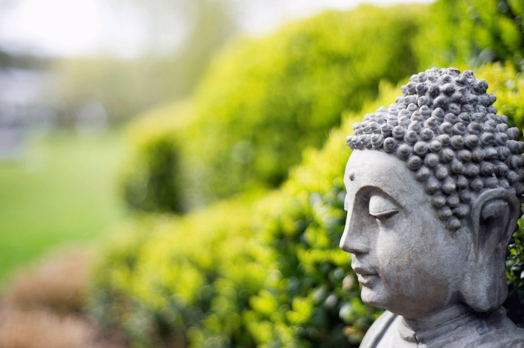 Stock Photo: 1738R-24866 Statue of Buddha in a garden
