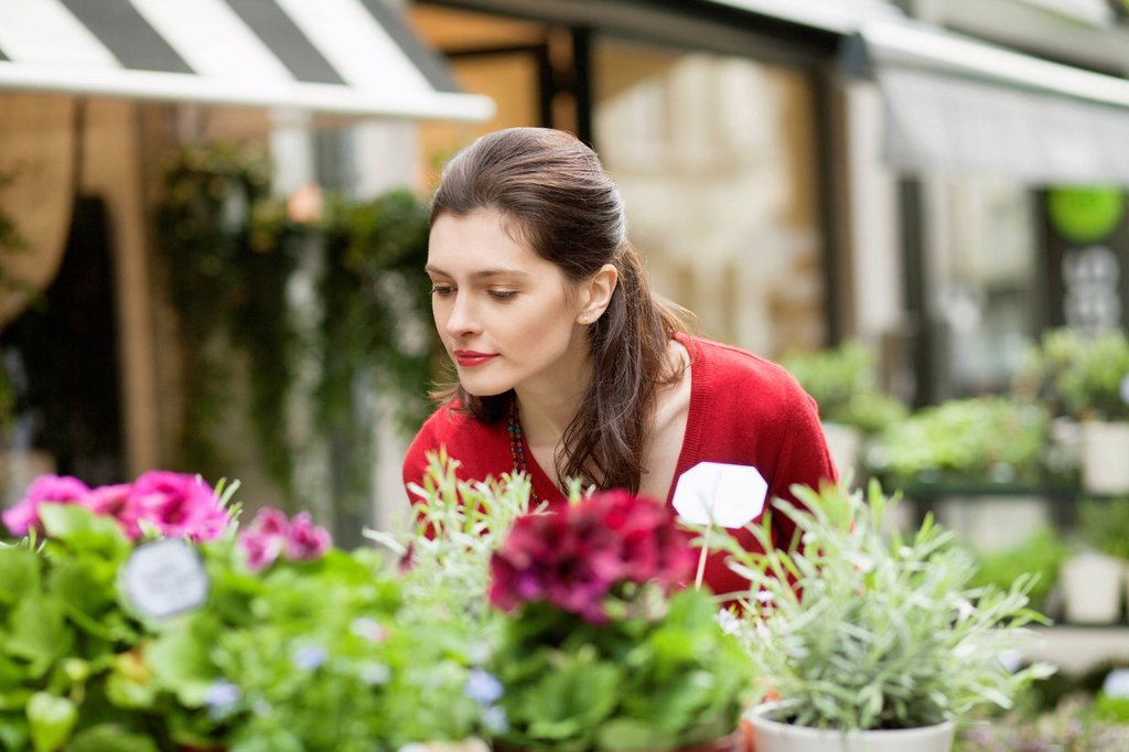 Woman smelling flowers in a flower shop : Stock Photo
